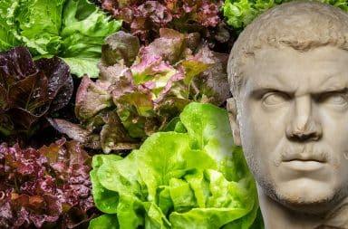 roman emperor caracalla and salads